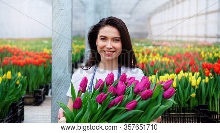 Young Beautiful Woman Greenhouse Worker Holds A Box With Blooming Tulips In Her Hands And Smiles.