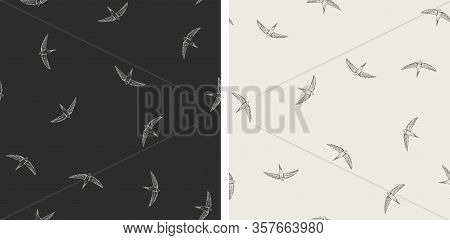 Set Of 2 Seamless Vector Pattern With Flying Swallows, Swifts. Doodle Dark Background With Birds