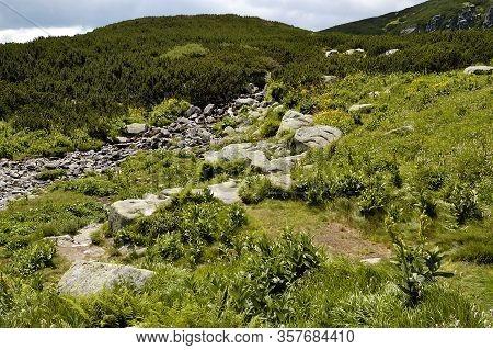 Furkotska Dolina. Tourist Trail. High Tatras. Slovakia. Mountain Ridge View. Summer. July.