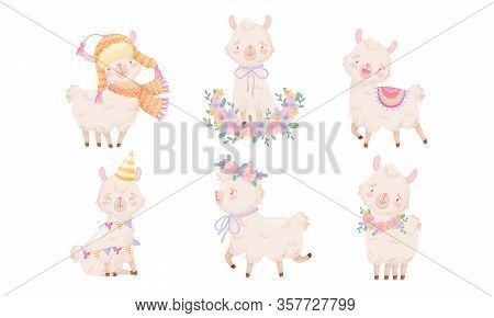 Cartoon Funny Alpaca Or Lama Character Wearing Warm Hat And Running With Floral Wreath On Its Head V