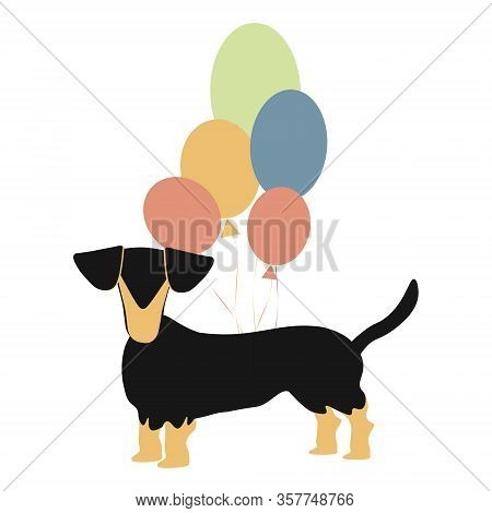 Cute Dachshund With Balloons. Greeting Card With Dog Isolated Vector