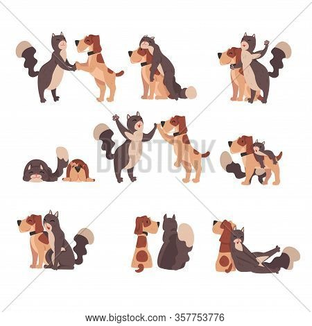 Animal Friendship Set, Cute Happy Cat And Dog, Cute Pets Characters Are Best Friends Vector Illustra