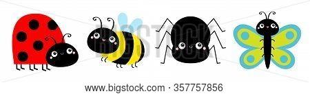 Ladybug Ladybird, Bee Bumblebee, Butterfly, Spider, Lady Bug. Insect Set Line. Cute Cartoon Kawaii B