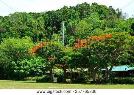 Sabah, My - June 20: Manukan Island Field On June 20, 2016 In Sabah, Malaysia. The Manukan Island Re