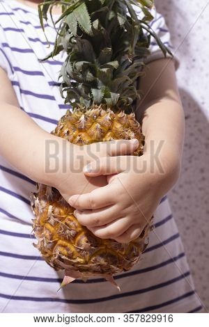 Female Holding Ripe Pineapple, Hug Raw Ananas. Vertical