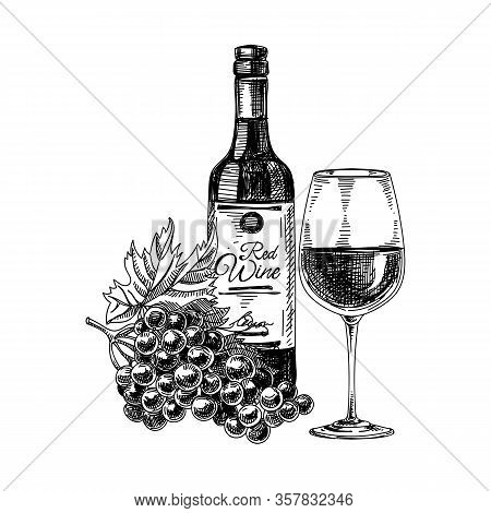 Red Wine: Composition With Bottle, Wineglass And Bunch Of Grapes, Hand Drawn Vector Illustration.