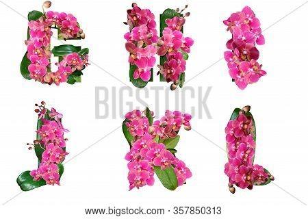 Floral Letters G H I J K L Of The Alphabet For Design And Decoration.