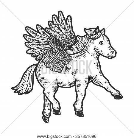 Horse Pony With Wings. Scratch Board Imitation. Black And White Hand Drawn Image.