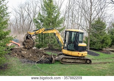 Backhoe Removing A Tree Root