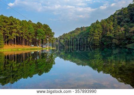 Camping Tents Under Pine Trees With Sunlight At Pang Ung Lake, Mae Hong Son In Thailand