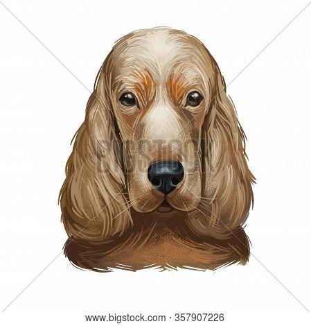 Tan English Cocker Spaniel Working Breed Of Gun Dog Digital Art Illustration Of Cute Canine Animal.