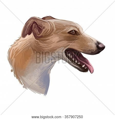 Lurcher Dog, Offspring Of Sighthound Mated With Pastoral Breed Or Terrier, Digital Art Illustration