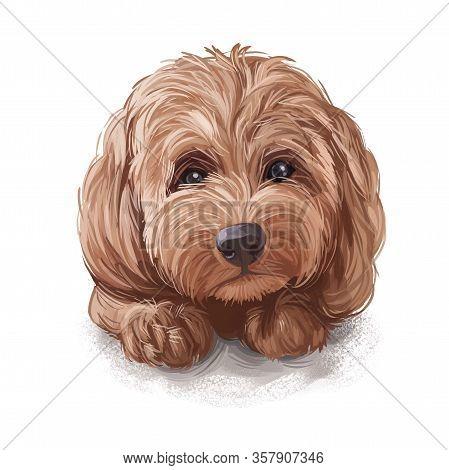 Tan Cockapoo Dog Digital Art Illustration Of Cute Canine Animal. Mixed-breed Dog Cross Between Ameri