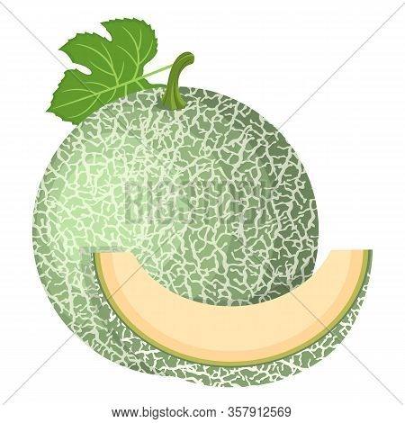 Fresh Whole, Cut Slice Melon Fruit Isolated On White Background. Cantaloupe Melon. Summer Fruits For