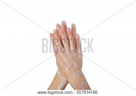 Female Soapy Hands. Hand Wash. Disinfection. Purity. Isolated On White Background