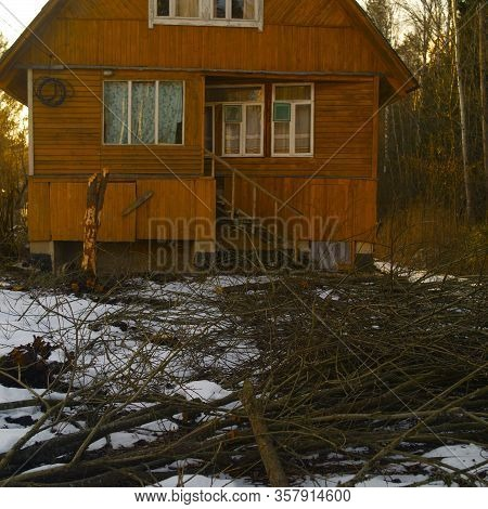 Cutting Tree In Front Of Summerhouse, Winter Scene, Focus In The Foreground