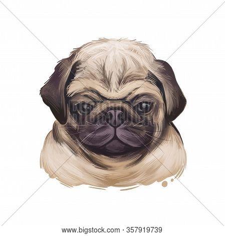 Puggle Digital Art Illustration Of Cute Dog Muzzle Isolated On White. Crossbreed Dog Between Beagle