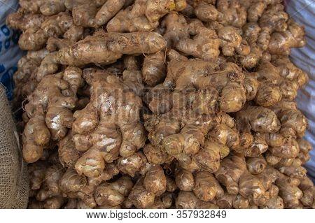 Fresh Organic Ginger On Food Market. Ginger Harvest. Group Of Fresh Ginger.