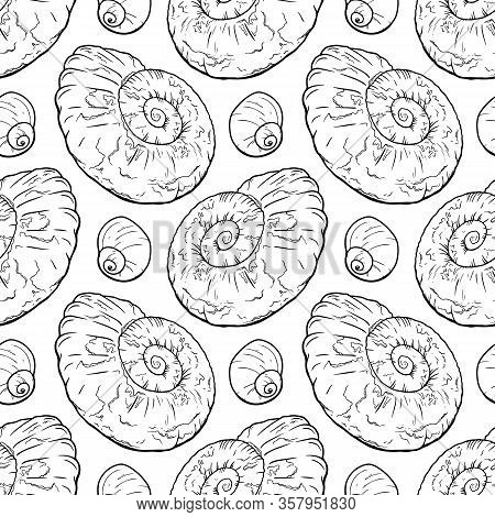Hand Draw Seanless Pattern With Sea Shells Ammonite For Girls, Boys, Clothes. Funny Ocean Wallpaper