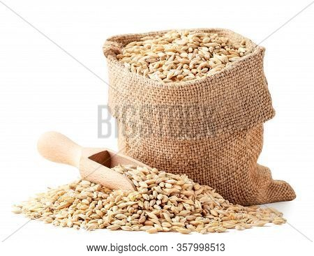 Grains Of Barley In A Bag With A Spatula Closeup On A White. Isolated