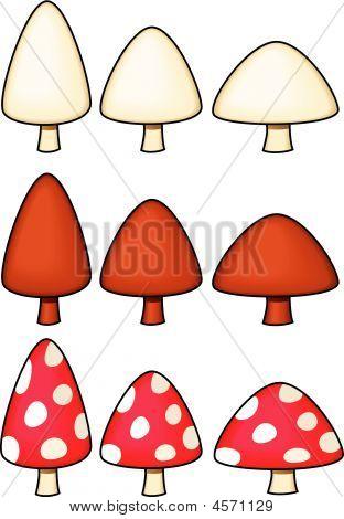 Mushrooms - Vector Illustration