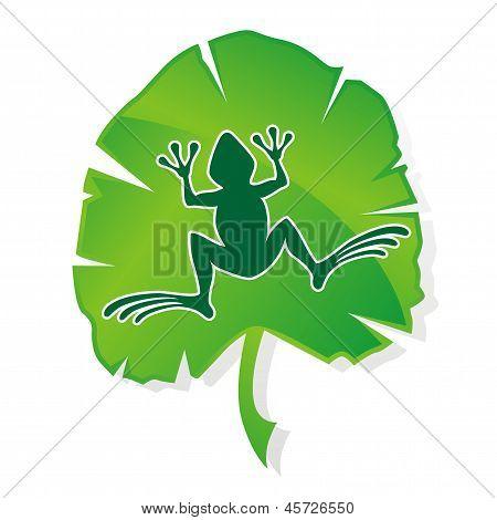 Green frog leaf