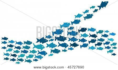 Fishes swim in majority and minority direction