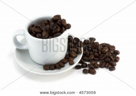 Coffeecub beans