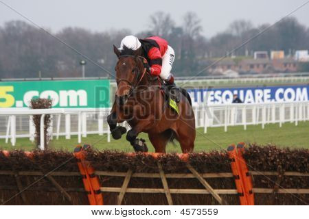 Horse Racing Steeple Chase
