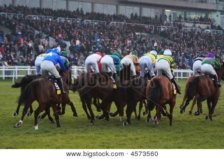 Horse Racing Rear View