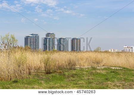 Architecture And Reeds