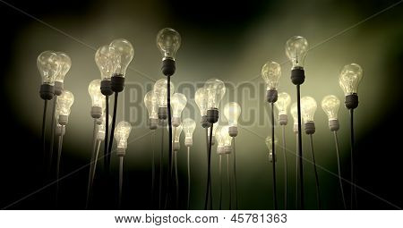 Light Bulbs Aiming Skyward With Eerie Glow