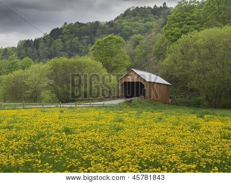 Covered bridge in Vermont, USA