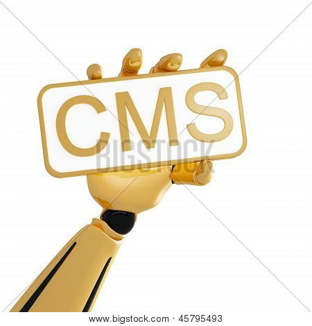 Golden Robotic Hand Hold The Plate With Word Cms