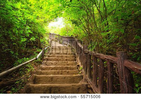 Stairway To Forest, Erawan National Park,kanchanburi,thailand