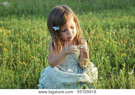 Little Sitting In A Field