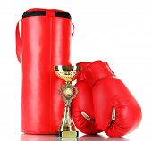 Boxing gloves and punching bag, isolated on white poster