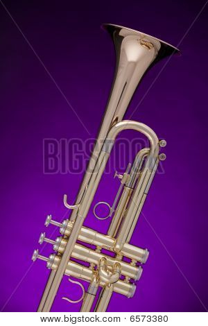 Trumpet Gold Isolated On Purple