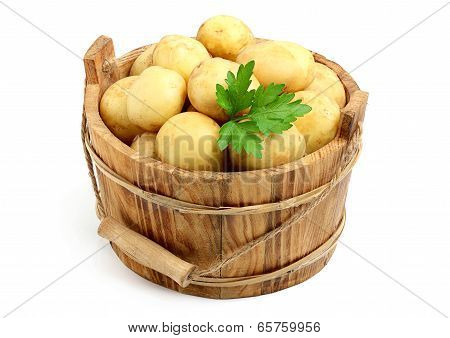 Fresh, Raw Potatoes In A Bucket.