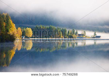 yellow and orange trees reflecting at idyllic foggy alp lake