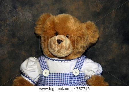 Dorathy Teddy Bear