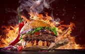 Delicious burger with fire flames poster