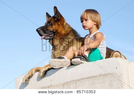 Cute Boy And Threatening German Shepherd.