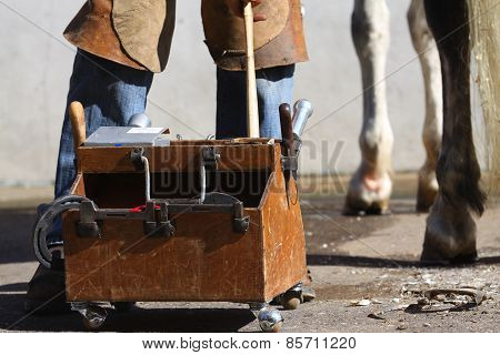 Farrier working at farm