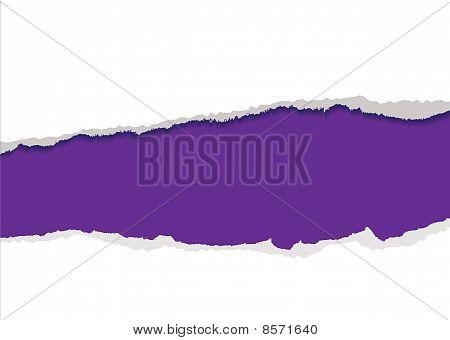 Purple Torn Strip Background
