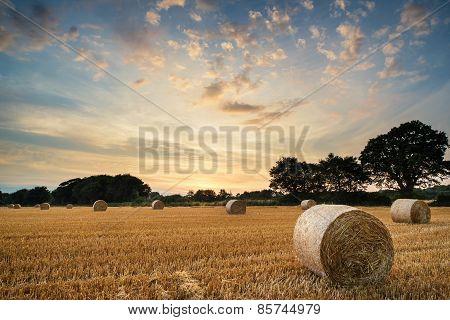 Rural Landscape Image Of Summer Sunset Over Field Of Hay Bales