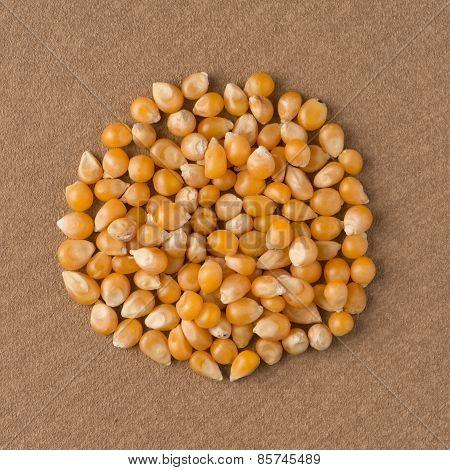 Circle Of Corn