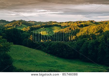Sunset in the styrian hills
