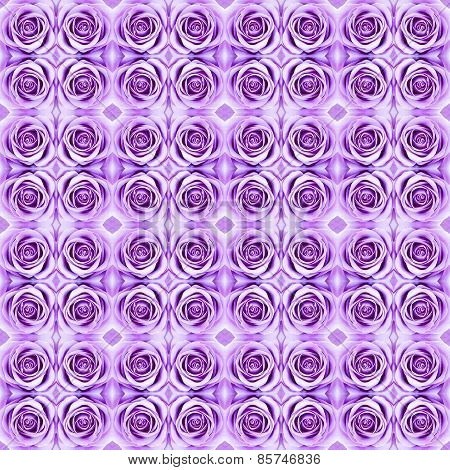Abstract Violet Rose Pattern Background.
