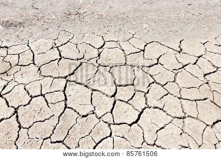 Salt On The Skin Nature Land